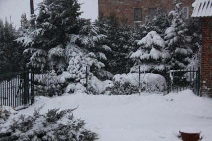 16-02-2012-celia-1