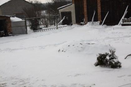16-02-2012-celia-12