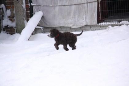 16-02-2012-celia-9