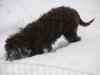 16-02-2012-celia-2
