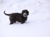 16-02-2012-celia-4