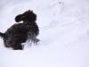 16-02-2012-celia-5